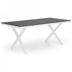 """Стол """"Leone"""" 200х100 из алюминия"""