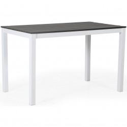 """Стол """"Leone"""" white-grey 120х70 из алюминия"""